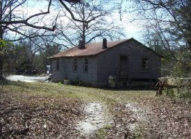 44 Acre Recreational/Hunting & Timber Tract