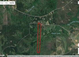 Affordable small hunting tract with adjoining 54 acres available in Lamar Co., GA