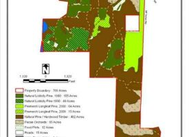 Trophy Deer Tract for Sale in Macon County, GA
