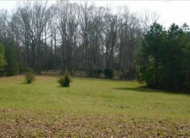 Great hunting & fishing tract with deer, turkey, ducks Talbot Co. GA