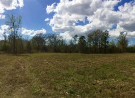 Great recreational tract with home site in Crawford County, GA