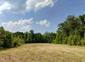 2 Mi. Oconee River Frontage, Big Timber, Great Hunting in Wheeler County,  GA