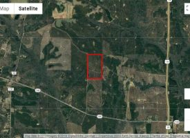 Secluded property with great hunting near Ellaville, Schley Co. GA