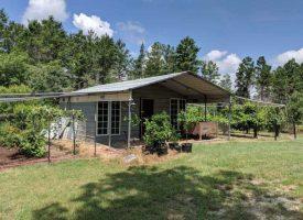 Cabin, woods, water, plenty of wildlife Roberta, Crawford Co. GA