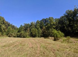 Beautiful Crawford Co Land with Home-site and Great Hunting