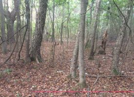 Great Pike County Location 18.49 Acres at Weems Road for 110847.0000