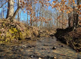 Great views, creek, and excellent deer hunting Crawford Co
