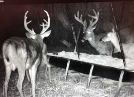 Hunting Plantation w 10 ac Lake!