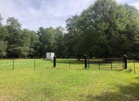 Houston County Mini Farm
