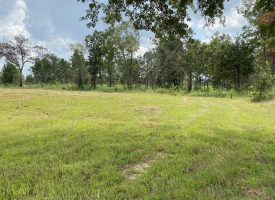 Crawford 91.5 ac at 490 Collins Rd for 315675