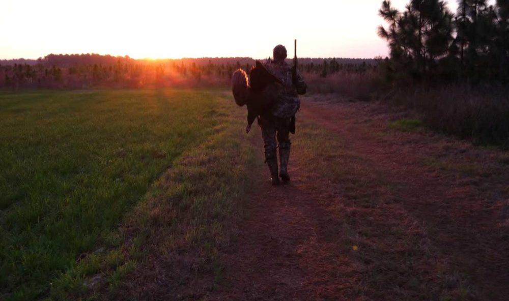 Georgia Turkey Hunting Tracts